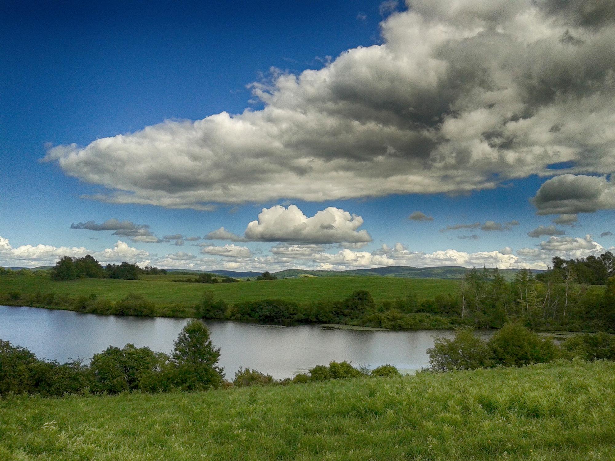 Ooms Pond Nature preserve