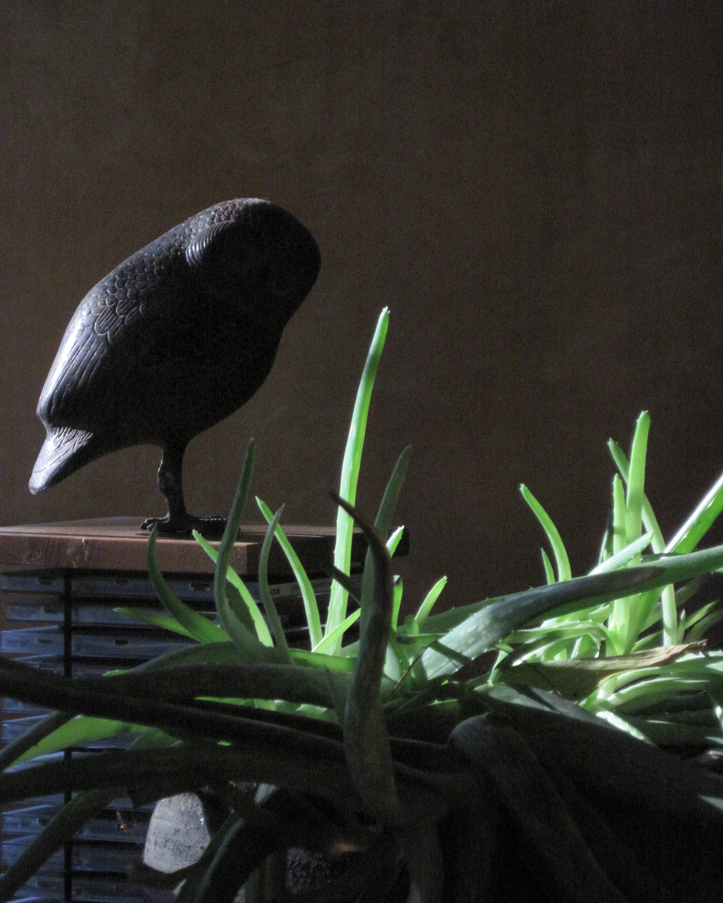 Owl figurine with aloe plant