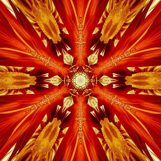 Kaleidoscopic Sunflower