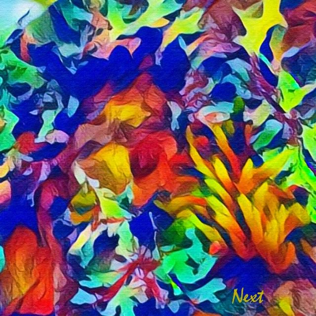 Mossy Lichen